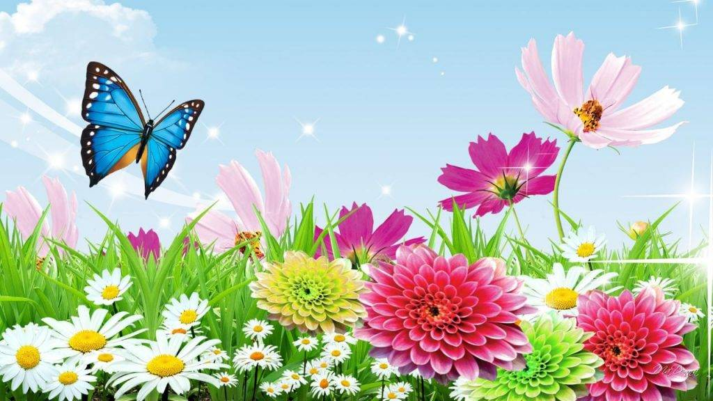flower sky wallpapers 61376 1139627
